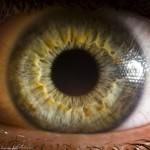 цветът на очите