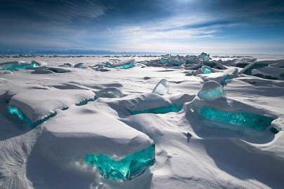 Ледници