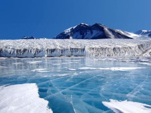 Ледников